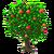 FujiApple Tree-icon