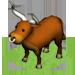 Pamplona Bull-icon