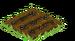 Blackberries Seed