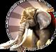 Siegeelephant