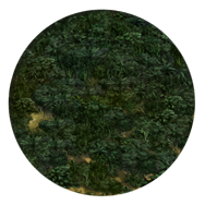 File:Jungle (Civ5).png