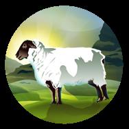 File:Sheep (Civ5).png