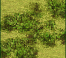 Forest (Civ3)