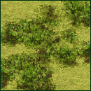 File:Forest (Civ3).png