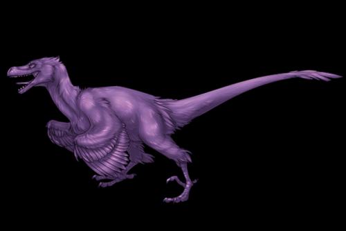 File:Raptor Adult.png