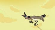 Bird Boy Man 47