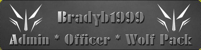 File:BradyBanner2.png