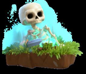 Skeleton info