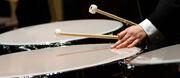 Percussion timpani spotlight