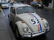 Marshall's Herbie
