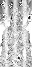 Hilda 's awakened form in the manga