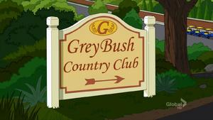 Grey Bush1
