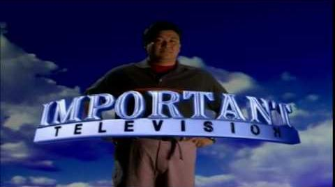 Important Television (2001)