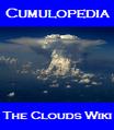 Thumbnail for version as of 16:06, November 23, 2007