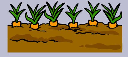 File:Garden 3.PNG