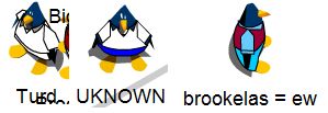 File:Brookbigchathats.png