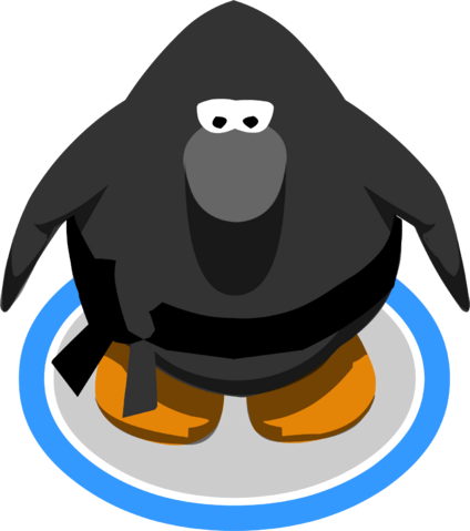 File:Ninja Outfit IG.png