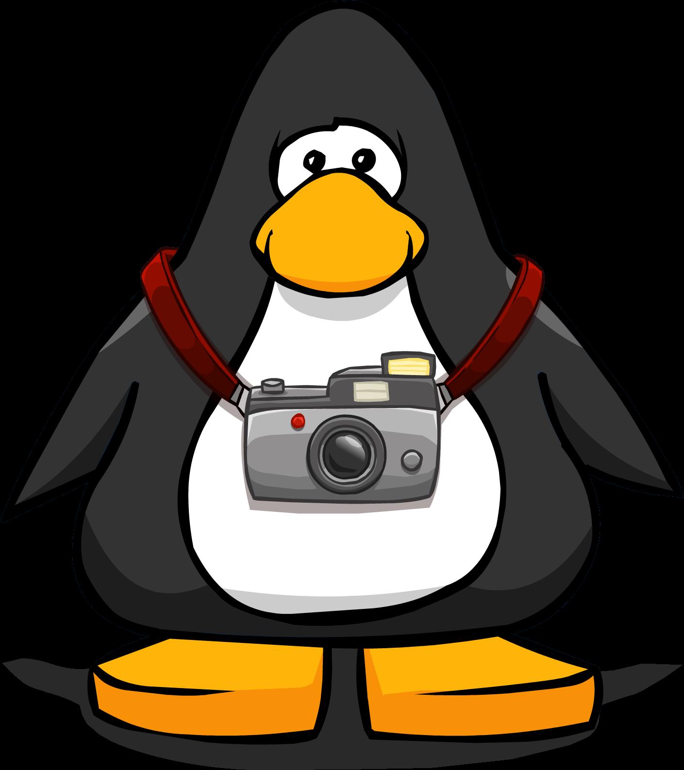 File:TouristCameraPC.png