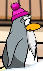 File:Bobble hat sensei.png