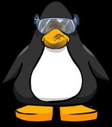 Lab Goggles PC