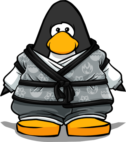 File:Tranquility Robe from a Player Card.PNG