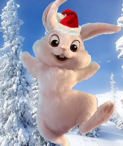 File:Winter Bunny.jpg