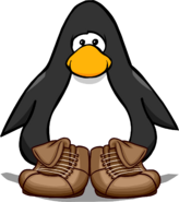 Brown Leather Boots PC