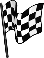 Checkered Flag clothing icon ID 5193