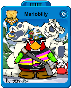 File:MariobillyPlayerCard.png