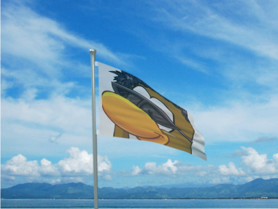 File:Theflag.jpg
