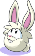 White Rabbit Puffle PH Player Card