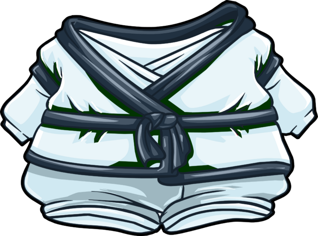 File:Whiteout Gi clothing icon ID 4845.png