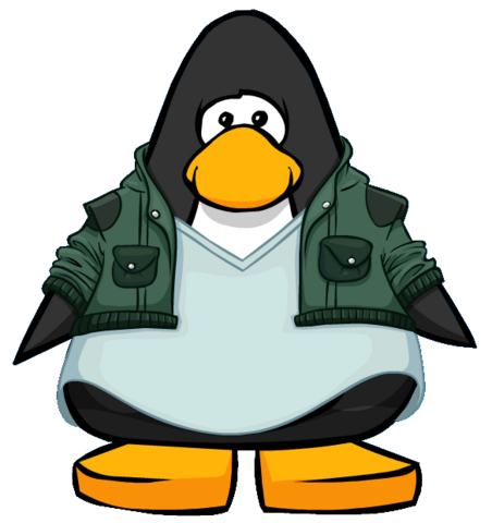 File:Green Tuff Jacket from a Player Card.PNG