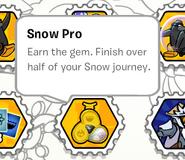 Snow pro stamp book