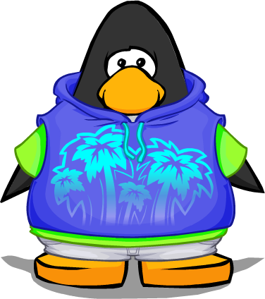 File:Surf's Up Hoodie from a Player Card.png