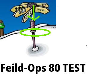 File:CPwikiFeildOps80test.png
