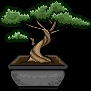 Bonsai Tree sprite 003