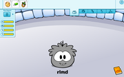 Grey puffle glitch