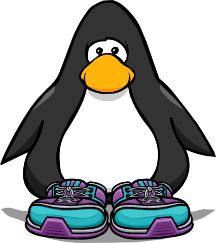 File:Summit Boots from a Player Card.png