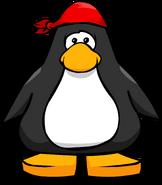 PirateBandanaPC