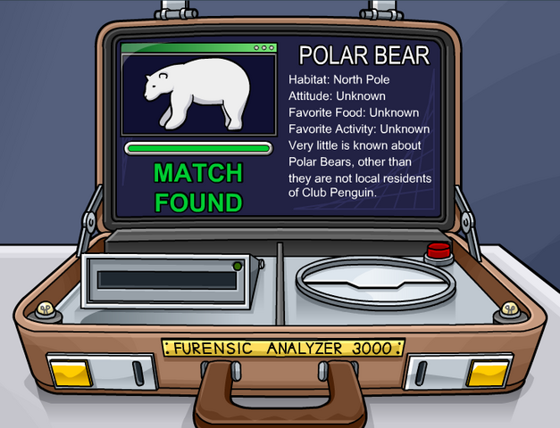 File:Polarear.png