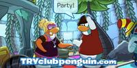 TryClubPenguin.com
