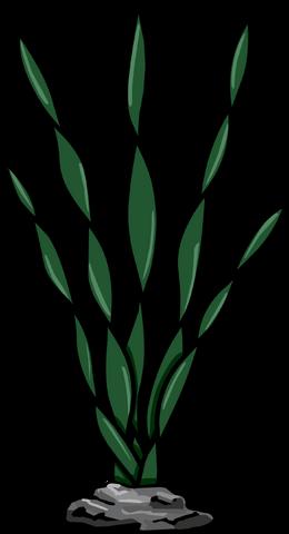 File:Sea Weed.PNG