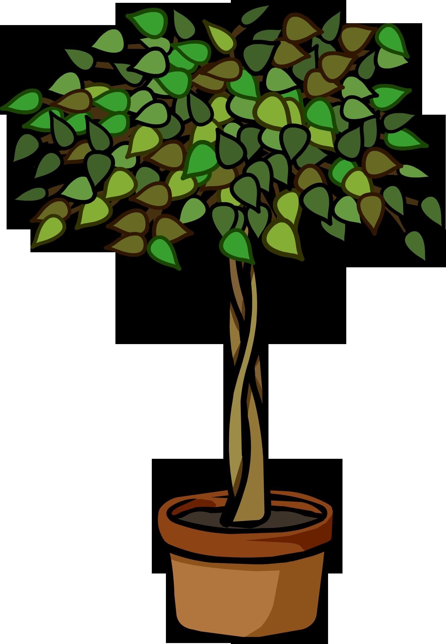 Ficus Plant Club Penguin Wiki Fandom Powered By Wikia