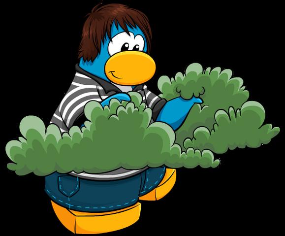 File:PenguinBush.png