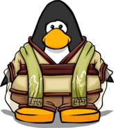Valley Robes on Player Card