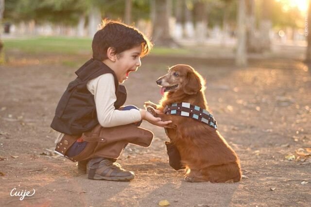 File:MiniHanSoloWithChewPuppy.jpg