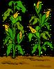 Garden sprite 003