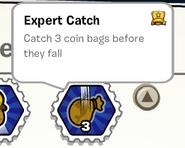 Expert catch stamp book