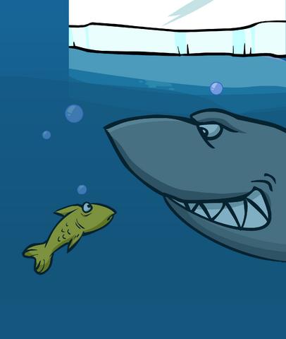 File:SHARK card image.png